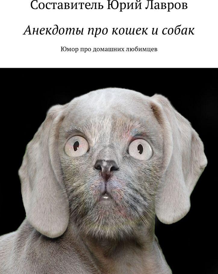 Анекдот Про Кошку