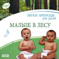 Звуки природы для детей. Малыш в лесу (mp3) звуки природы для детей малыш в лесу mp3
