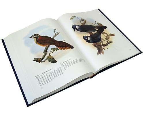 Птицы Азии (эксклюзивное издание). Джон Гульд