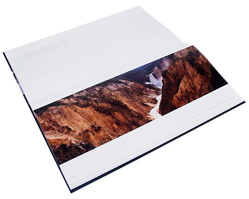 Дикая природа (подарочное издание). Томас Д. Мэнгельсен