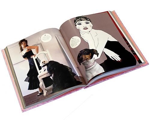 Модные штучки для ваших любимцев (подарочное издание). Джулия Мейерс