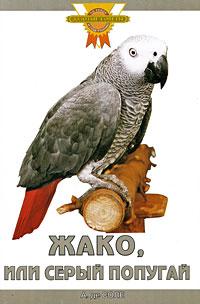 А. де Соле Жако, или Серый попугай имена для попугаев жако