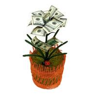 Денежный цветок Расцвет бизнеса. Доллары, цвет: красный, зеленый, белый путешествие цветка