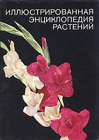 Ф. А. Новак Иллюстрированная энциклопедия растений
