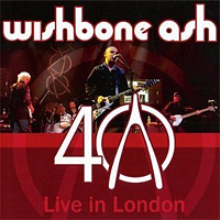 Wishbone Ash Wishbone Ash. 40th Anniversary Concert: Live In London (LP) гладиатор live in concert 2018 02 22t19 30