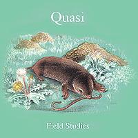 Quasi Quasi. Field Studies