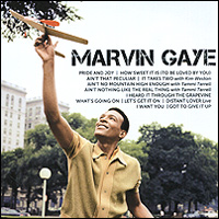 Марвин Гэй Marvin Gaye. Icon цены