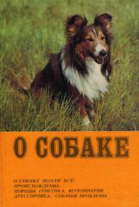 О собаке намико фукуи человек собаке друг