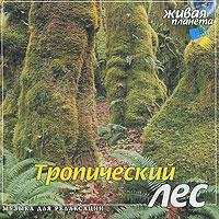 Тропический лес. Музыка для релаксации