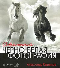 Александр Ефремов. Современная черно-белая фотография