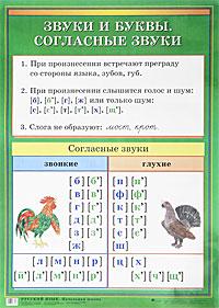 Русский язык. Начальная школа. Согласные звуки и буквы. Имя существительное. Плакат. Доставка по России