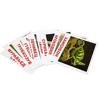 цена Обучающая игра Вундеркинд с пеленок Карточки Домана Экзотические животные онлайн в 2017 году