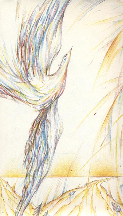 идеи картинки синяя птица метерлинка синяя дикой природе эта