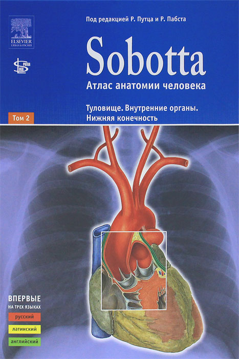 Sobotta ebook atlas anatomi