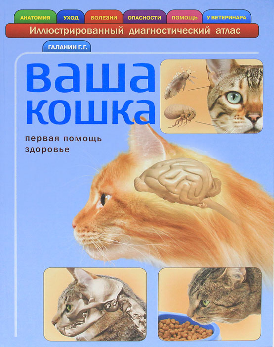 Г. Г. Галанин Ваша кошка