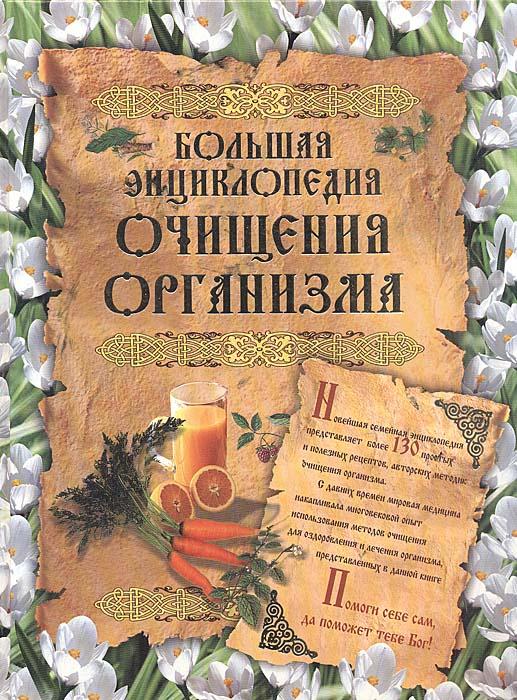 Т. Федосеева Большая энциклопедия очищения организма