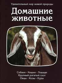 Г. Москоу Домашние животные