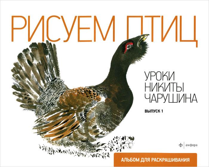 Уроки Никиты Чарушина. Выпуск 1. Рисуем птиц