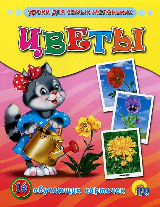 Цветы. 16 обучающих карточек цветы 16 обучающих карточек