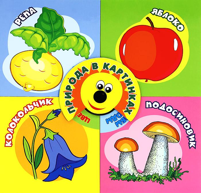 Природа в картинках шестернина н ред тематический словарь в картинках мир растений и грибов ягоды грибы