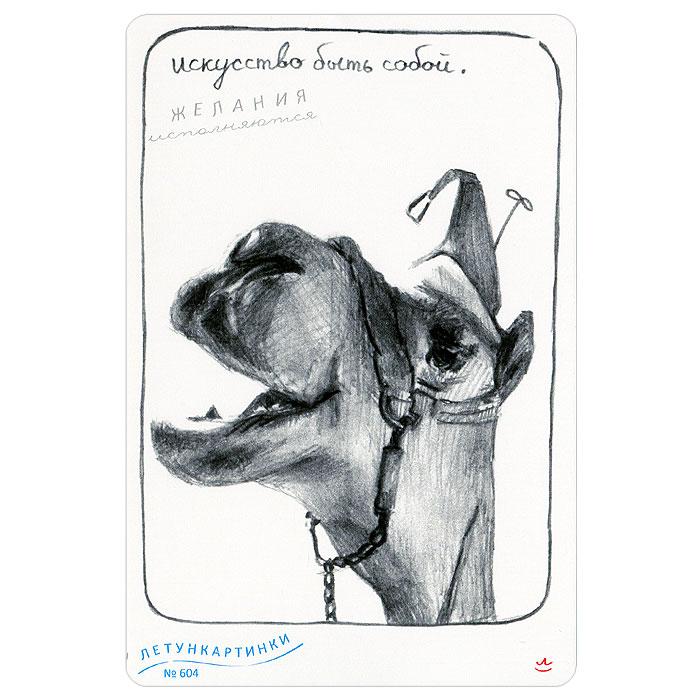 Картинках приколы, летун открытка