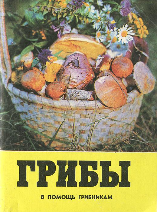Грибы. В помощь грибникам грибы в помощь грибникам