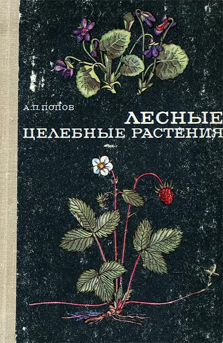 Фото - А. П. Попов Лесные целебные растения растения