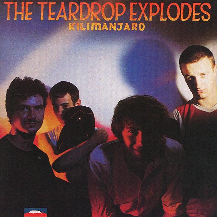 The Teardrop Explodes The Teardrop Explodes. Kilimanjaro pair of retro flower decorated crystal teardrop pendant earrings for women