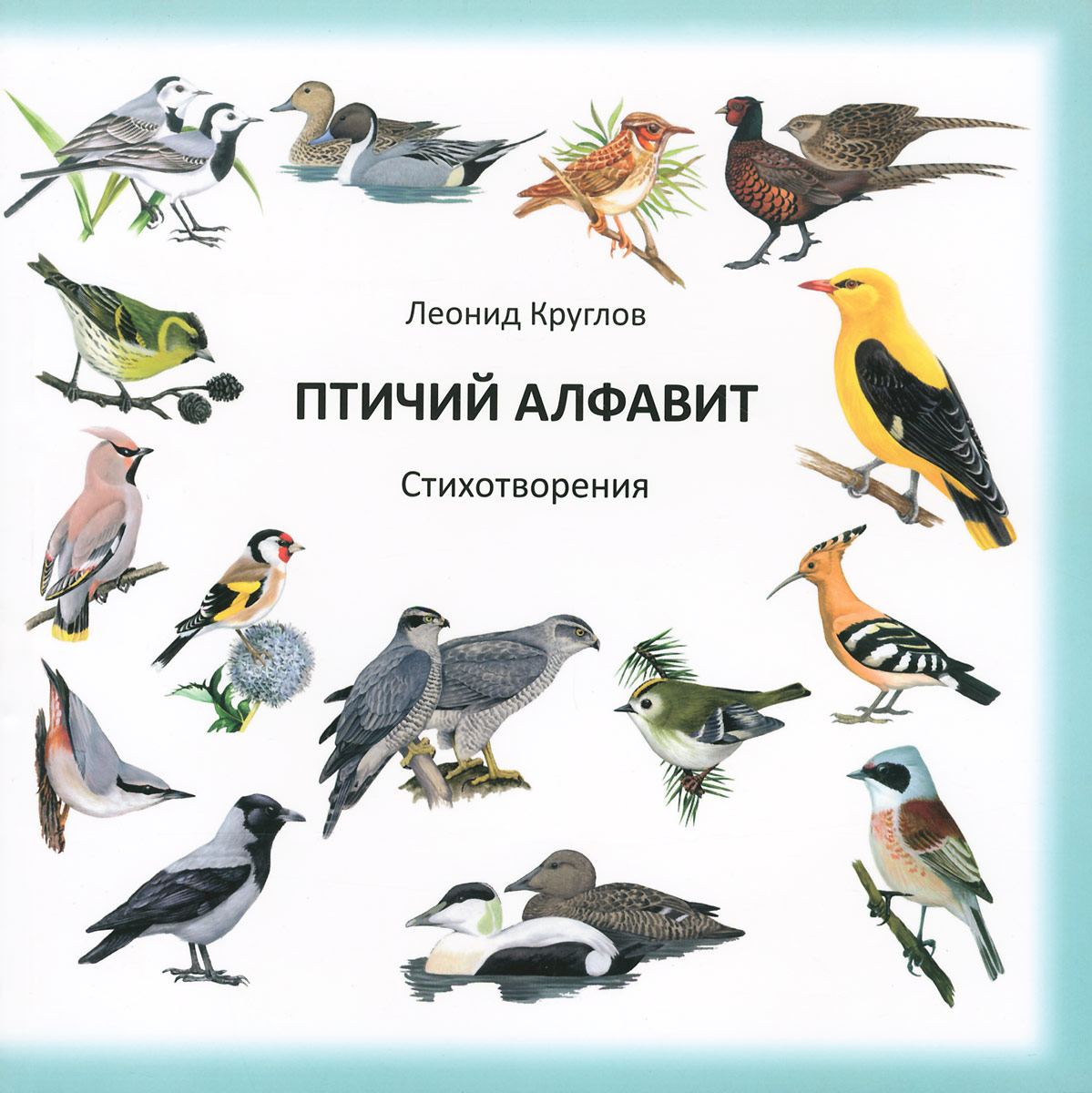 азбука птиц с картинками приложить невероятную силу