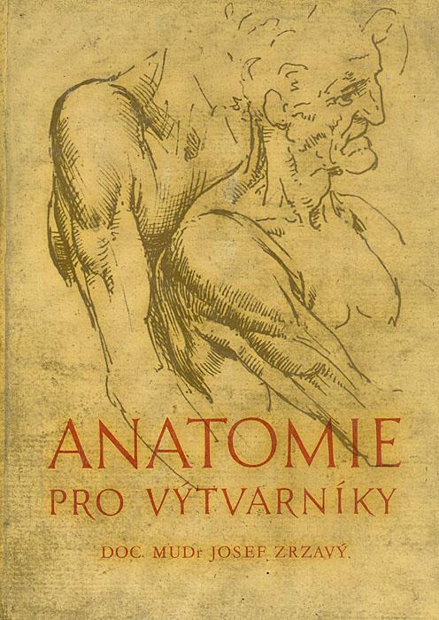 Mudr Josef Zrzavy Anatomie pro vytvarniky