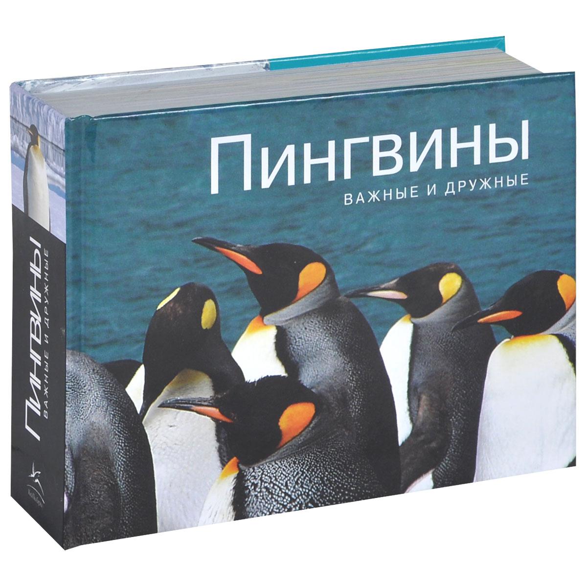 Парселл Л. Пингвины. Важные и дружные все цены