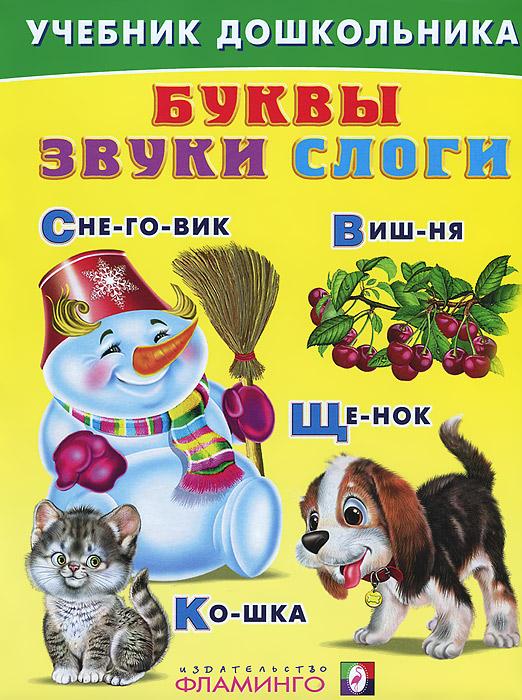В. А. Степанов Буквы. Звуки. Слоги