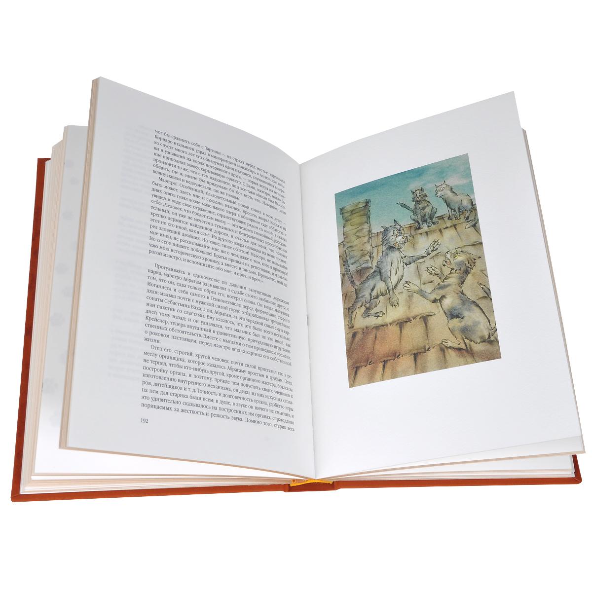Житейские воззрения кота Мурра (эксклюзивное подарочное издание). Эрнст Теодор Амадей Гофман