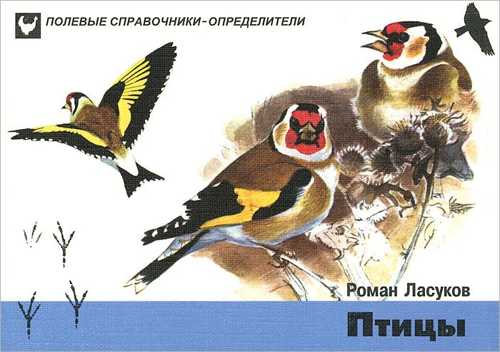 Р. Ю. Ласуков Птицы. Карманный определитель эксмо птицы краткий карманный определитель