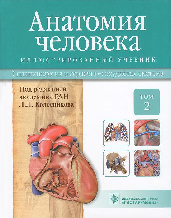 И. В. Гайворонский Анатомия человека. Учебник. В 3 томах. Том 2. Спланхнология и сердечно-сосудистая система