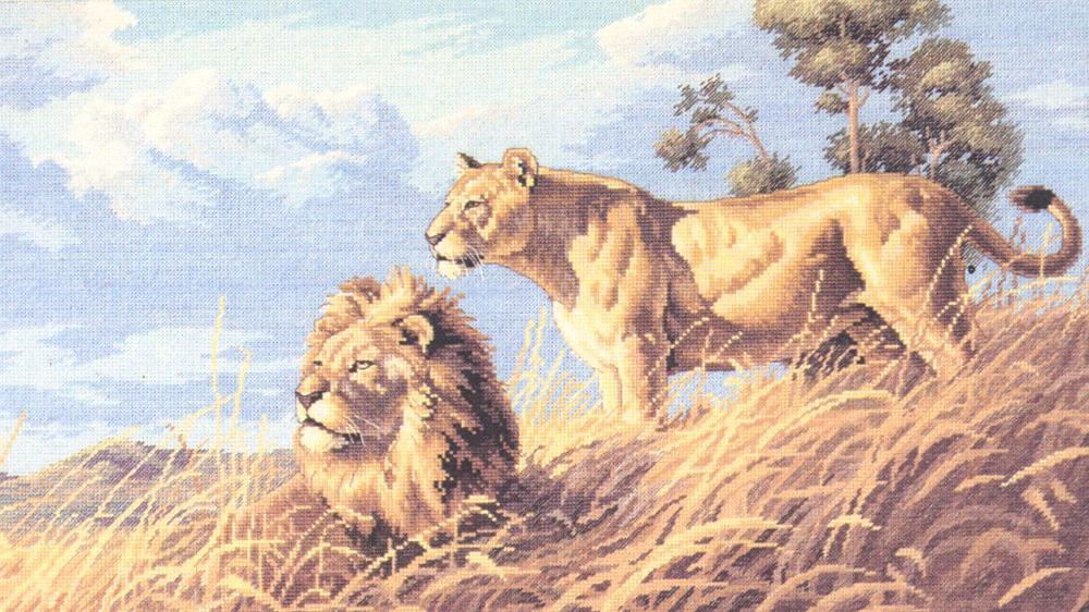 Набор для вышивания Dimensions Африканские львы, 46 см х 25 см 17066 dms dimensions dimensions