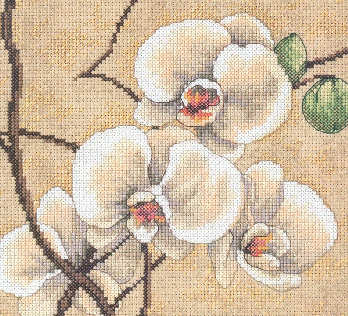 Набор для вышивания Dimensions Восточные орхидеи, 30 см х 30 см 17066 dms dimensions dimensions