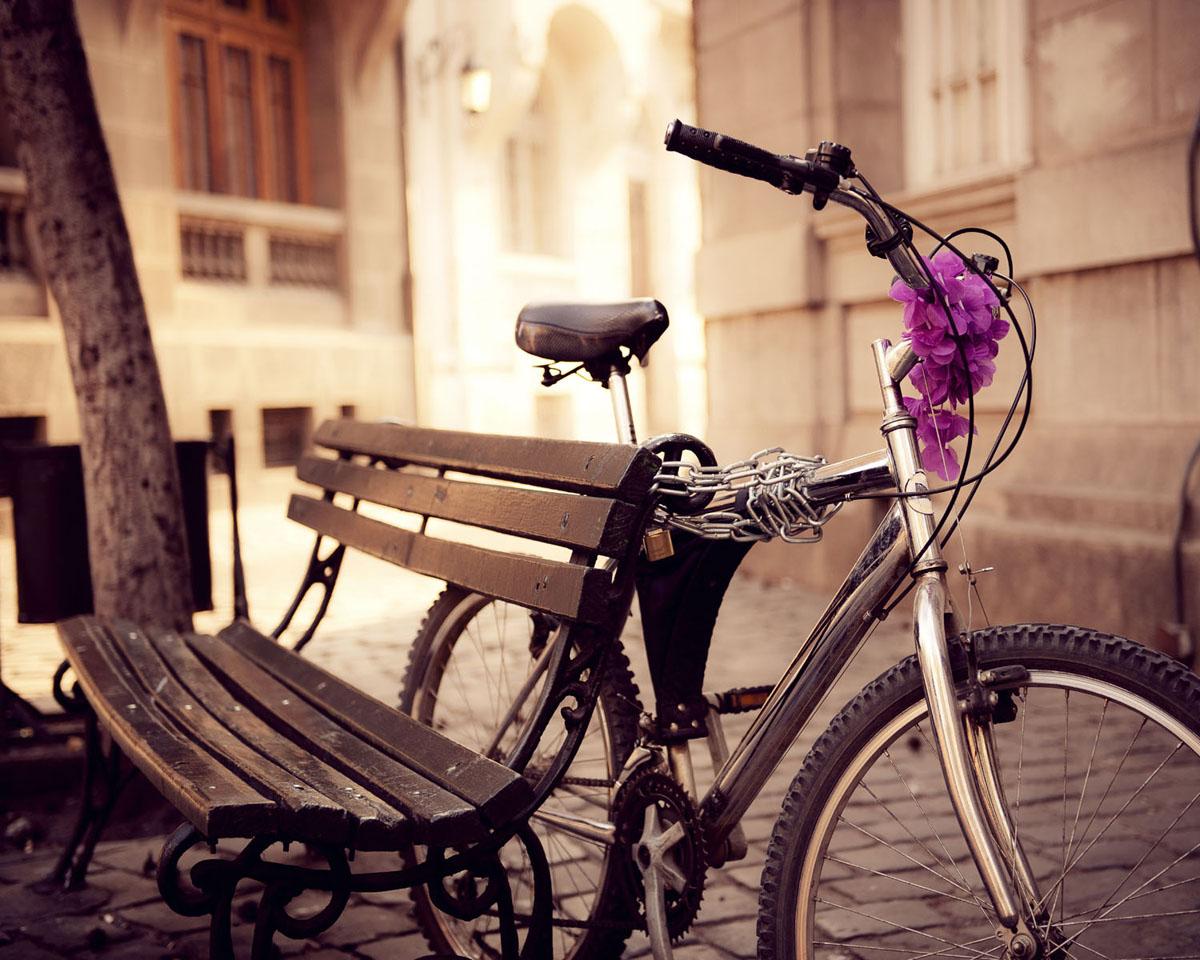 """Картина на стекле Postermarket """"Велосипед"""", 50 см х 40 см"""