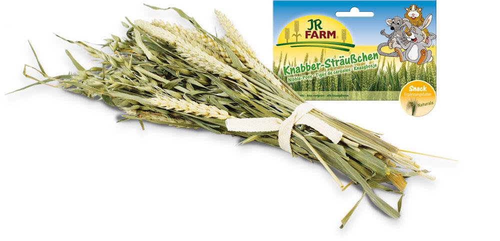 Лакомство для грызунов JR Farm Букет зерновых культур, 25 г цена
