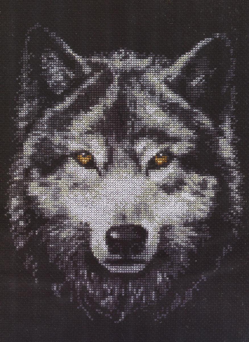Набор для вышивания крестом Взгляд волка, 21 х 27 см набор для вышивания крестом хрустальная бабочка 31 см х 40 см