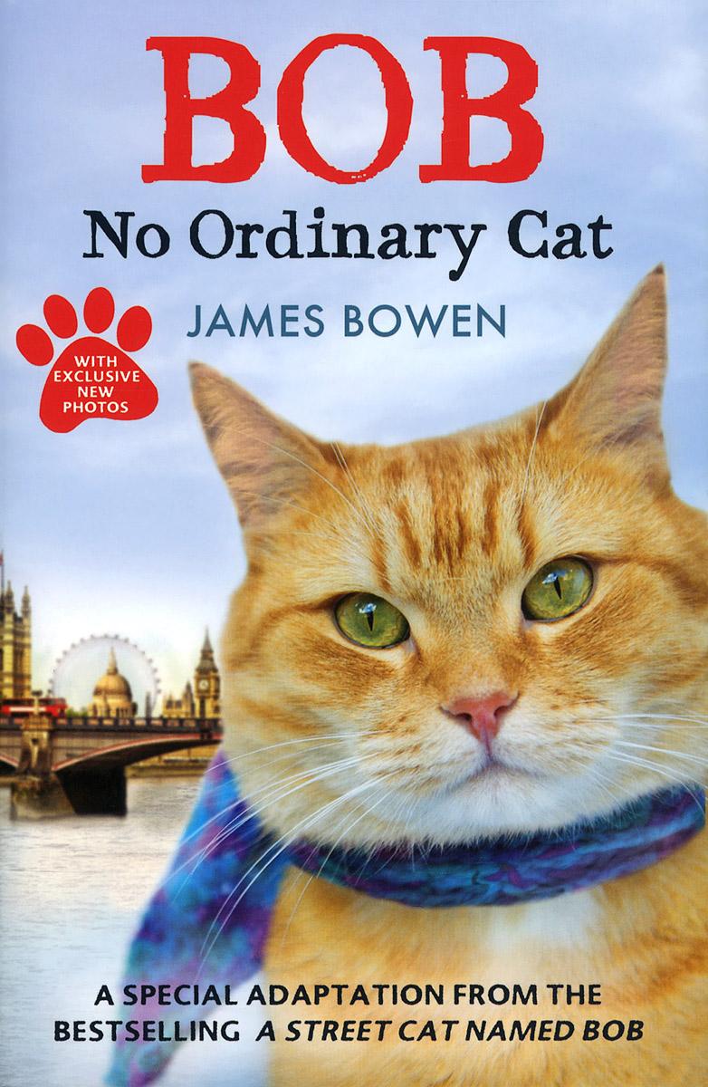 Фото - Bob: No Ordinary Cat bowen j bob no ordinary cat