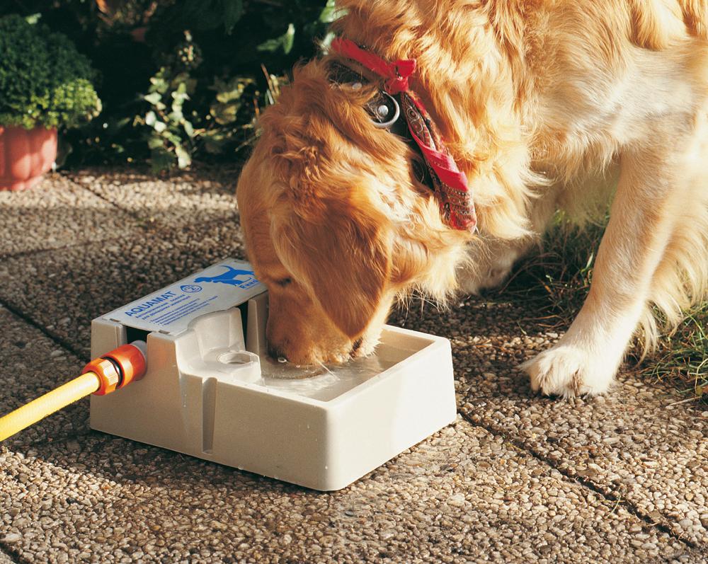 Поилка для животных Feed-Ex Aquamat, автоматическая, 2 лPW07Поилка для животных Feed-Ex Aquamat - автоматическая поилка для собак, кошек, птиц и других домашних животных, изготовленная из высокопрочного пластика. Устанавливается на улице и подключается к гибкому или садовому шлангу. Поилка будет автоматически пополняться по мере того, как ваш питомец будет из нее пить. Возможны 2 варианта подключения: - к садовому шлангу с помощью стандартного коннектора (входит в комплект) - для использования на улице; - установка стандартной бутылки с питьевой водой - для использования внутри помещений. Крепление осуществляется к полу или на стену. Объем поилки: 2 л. Питание от сети: 220В.