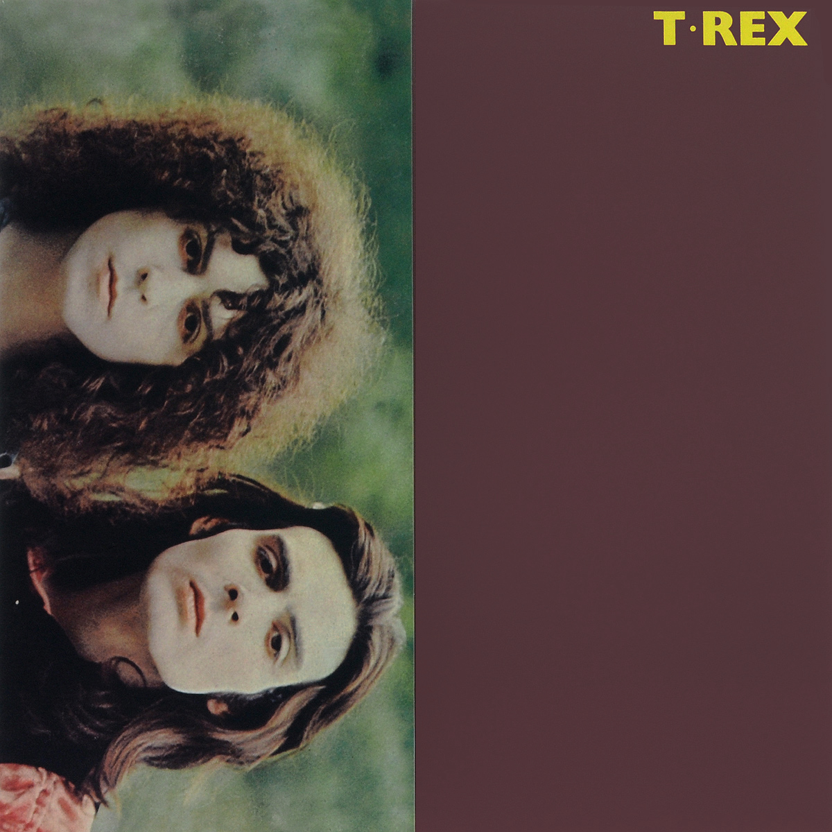 T. Rex T. Rex. T. Rex (LP) uncle milton динопедия t rex