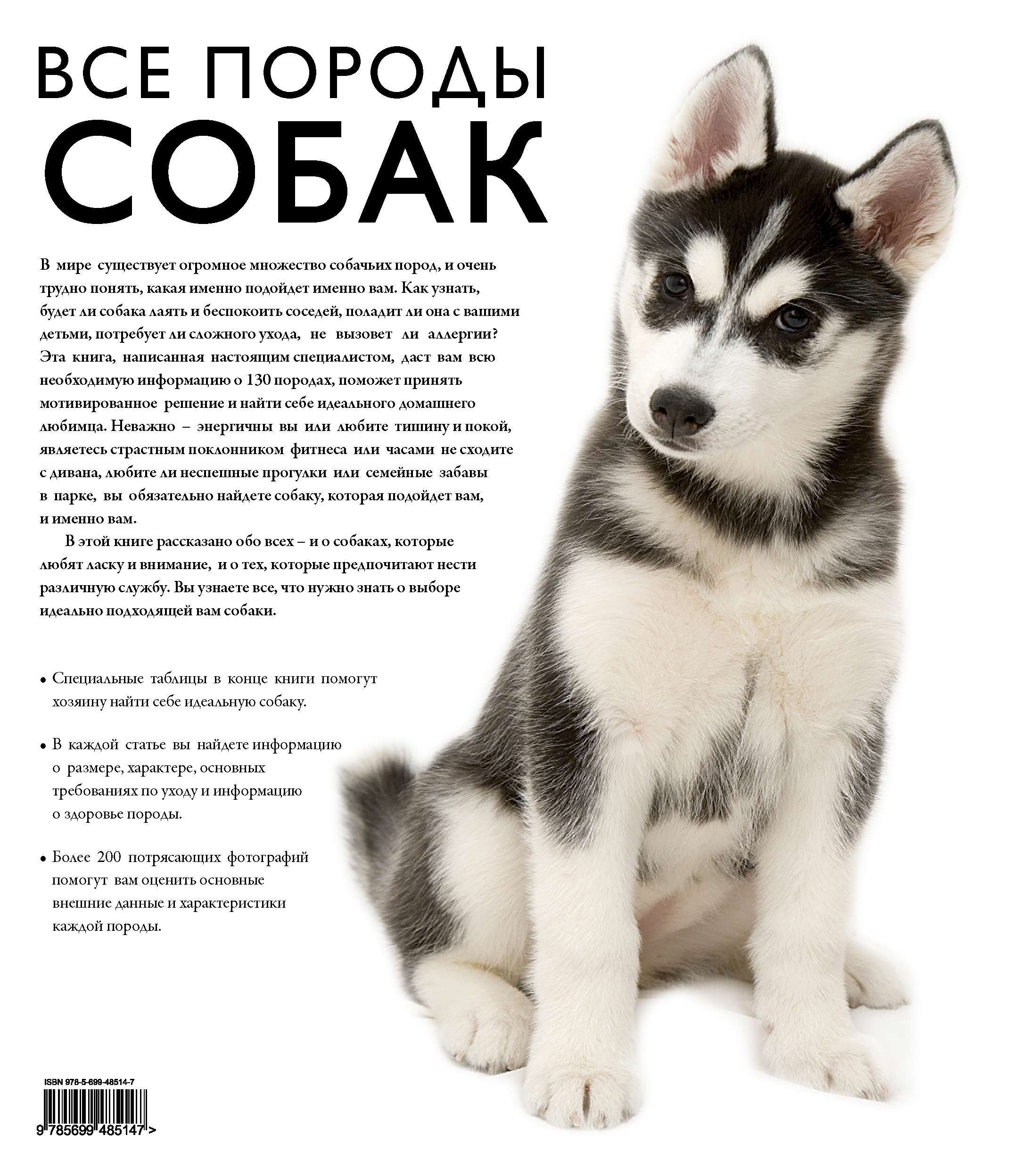 Картинки собак с описанием
