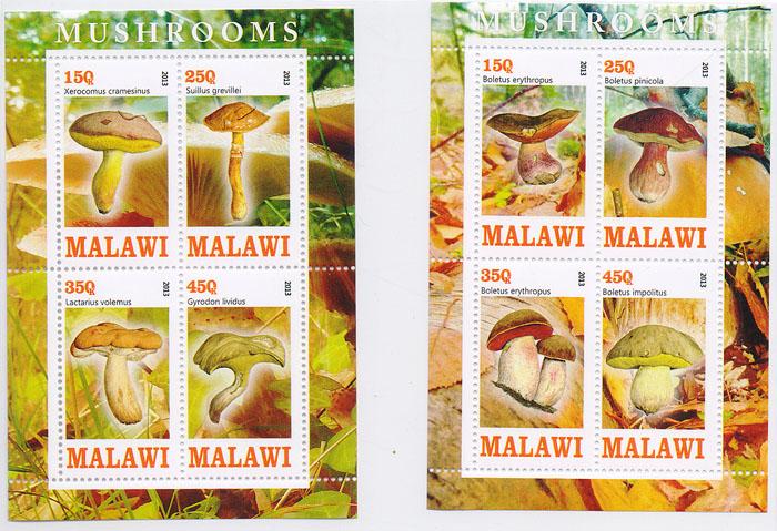 Комплект из 2 почтовых блоков Грибы. Малави, 2013 год комплект из трех почтовых блоков рептилии джибути руанда малави 2013 год