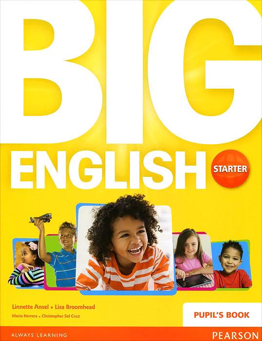 Big English Starter: Pupil's Book students assessment