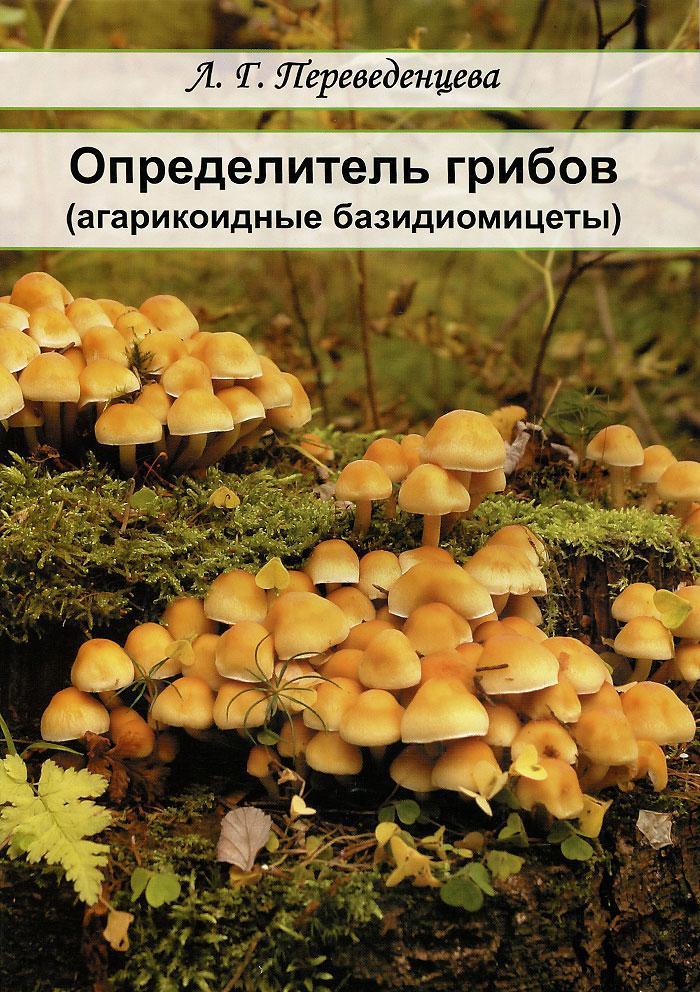 Л. Г. Переведенцева Определитель грибов (агарикоидные базидиомицеты). Учебное пособие