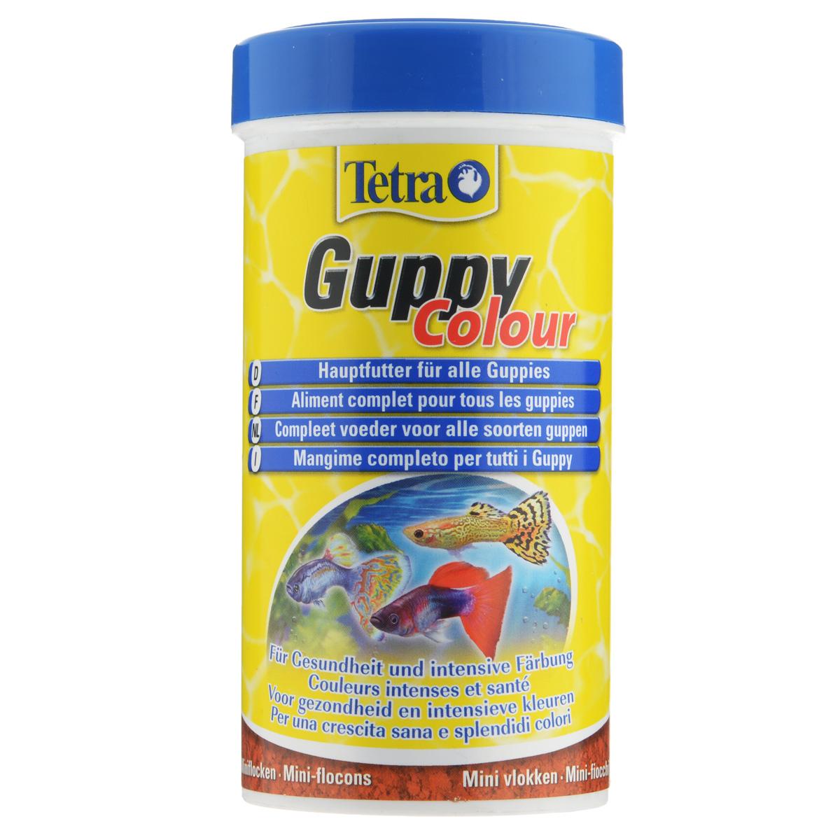 Корм Tetra Guppy Colour  для всех видов гуппи, в виде мини-хлопьев, 250 мл197190Корм Tetra Guppy Colour  - это полноценный корм в виде мини-хлопьев для всех видов гуппи, а также для других живородящих аквариумных рыб. Содержит натуральные усилители окраски (каротиноиды, полученные из некоторых видов растений и ракообразных). Содержит легкоусвояемый растительный белок. Улучшает иммунную систему и развитие организма. Рекомендации по кормлению: кормить несколько раз в день маленькими порциями. Характеристики: Состав: рыба и побочные рыбные продукты, экстракты растительного белка, зерновые культуры, растительные продукты, дрожжи, моллюски и раки, масла и жиры, водоросли, минеральные вещества. Пищевая ценность: сырой белок - 45%, сырые масла и жиры - 8%, сырая клетчатка - 4%, влага - 8%. Добавки: витамины, провитамины и химические вещества с аналогичным воздействием: витамин А 27200 МЕ/кг, витамин Д3 1700 МЕ/кг. Красители, антиоксиданты. Вес: 250 мл (75 г).Товар сертифицирован.