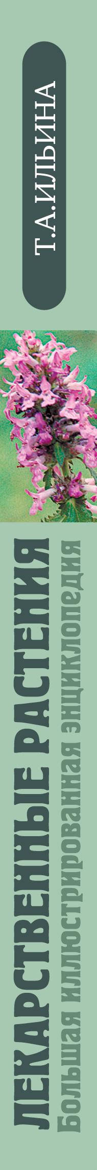 Ильина Татьяна Александровна. Лекарственные растения. Большая иллюстрированная энциклопедия 0x0