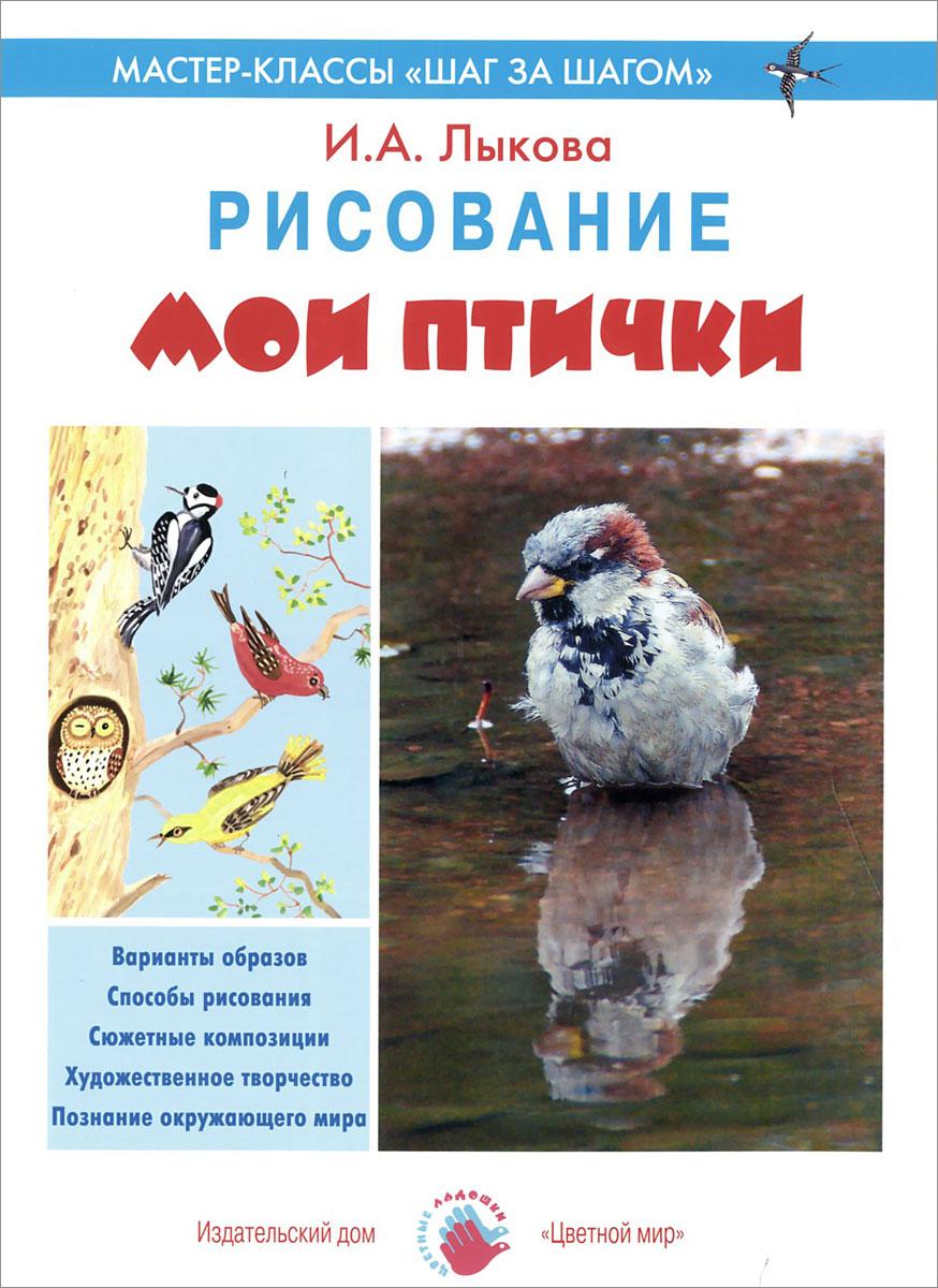 И. А. Лыкова Мои птички. Рисование лыкова и где мои карандаши истории в картинках для рисования 1 3 года
